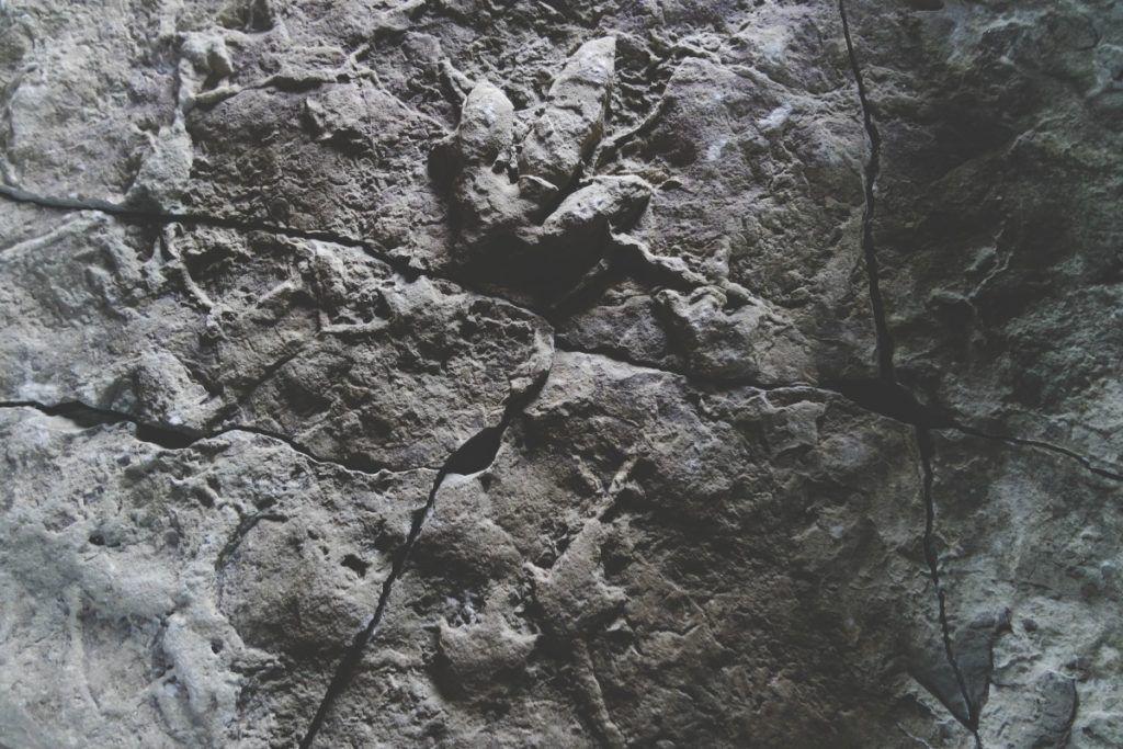 Dinó-lábnyom, Staffin Museum