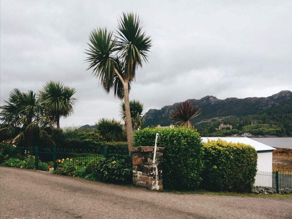 plockton skót felföld